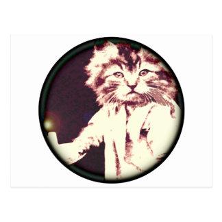 蝋燭猫 ポストカード