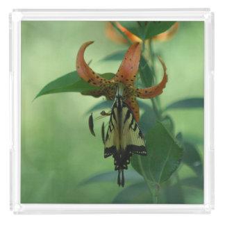 蝶およびユリの香水の皿 アクリルトレー