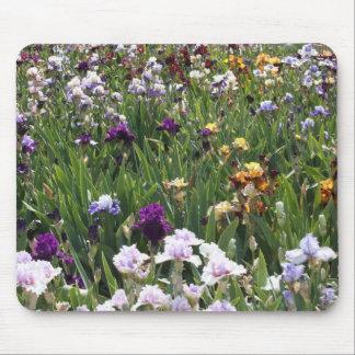 蝶および紫色のアイリスマウスパッド マウスパッド