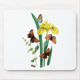 蝶および黄色アイリス マウスパッド