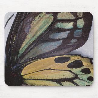 蝶によってはマウスパッドが飛びます マウスパッド