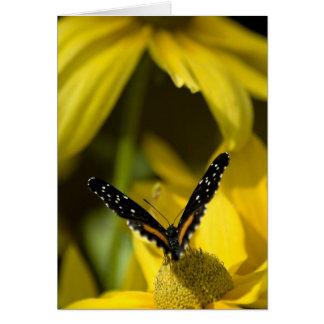 蝶の優美 カード