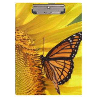 蝶を持つ黄色いデイジー クリップボード