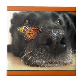 蝶を持つ黒い実験室犬 タイル