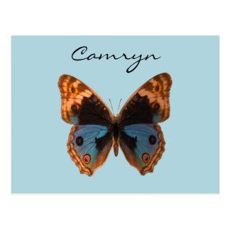 蝶ガの昆虫の名前入りな名前 ポストカード