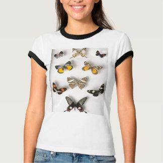 蝶コレクションのTシャツ Tシャツ