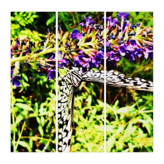 蝶世界 トリプティカ