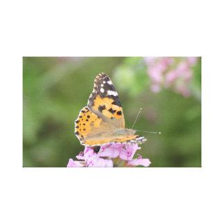 蝶写真のキャンバスのプリント キャンバスプリント
