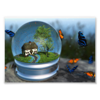 蝶地球の写真のプリント フォトプリント