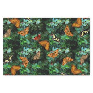 蝶庭 薄葉紙