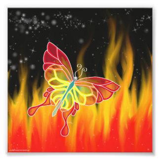 蝶火の写真のプリント フォトプリント