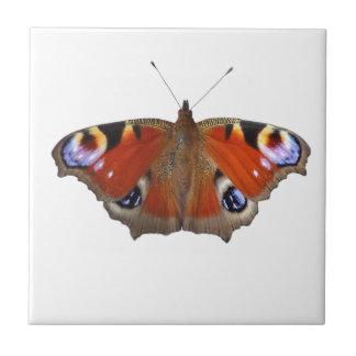 蝶翼 正方形タイル小