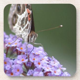 蝶薮の美しい蝶 コースター