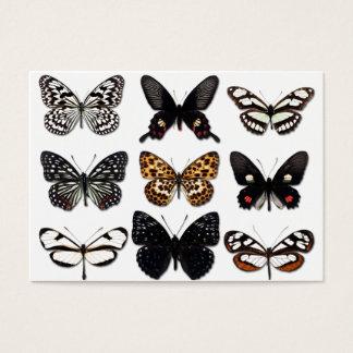 蝶表示 名刺