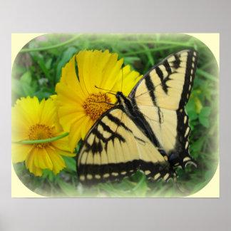 蝶黄色 ポスター