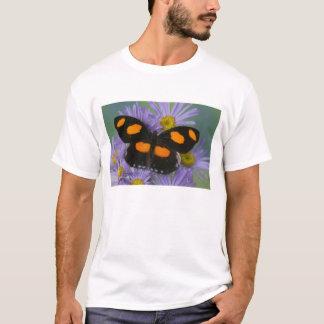 蝶15のSammamishワシントン州の写真 Tシャツ