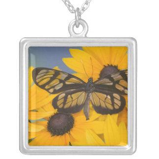 蝶24のSammamishワシントン州の写真 シルバープレートネックレス