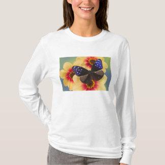 蝶40のSammamishワシントン州の写真 Tシャツ