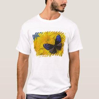 蝶42のSammamishワシントン州の写真 Tシャツ