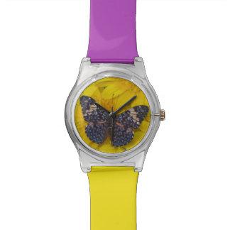 蝶43のSammamishワシントン州の写真 腕時計