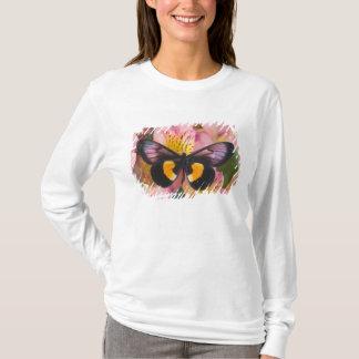 蝶45のSammamishワシントン州の写真 Tシャツ