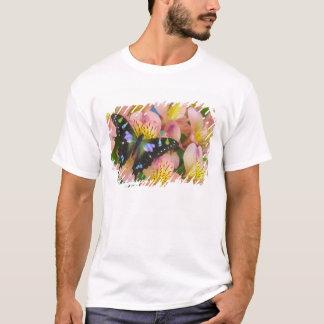 蝶47のSammamishワシントン州の写真 Tシャツ