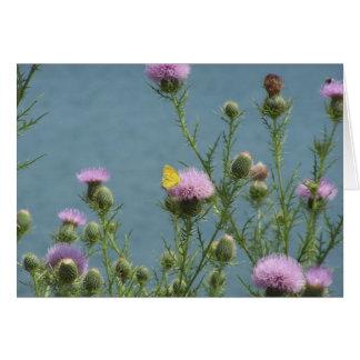 蝶、アザミの花及び湖 カード