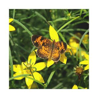 蝶、キャンバスプリントの印刷物 キャンバスプリント