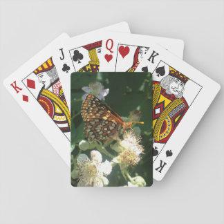 蝶 トランプ