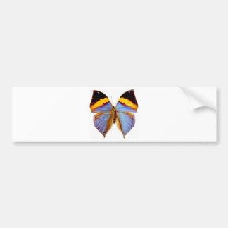蝶 バンパーステッカー