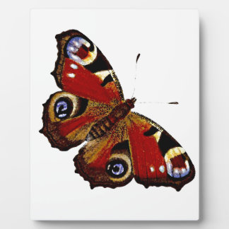 蝶 フォトプラーク