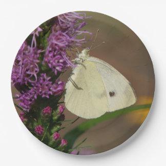 蝶、紙皿 ペーパープレート