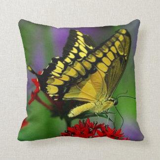 蝶#5アゲハチョウ クッション