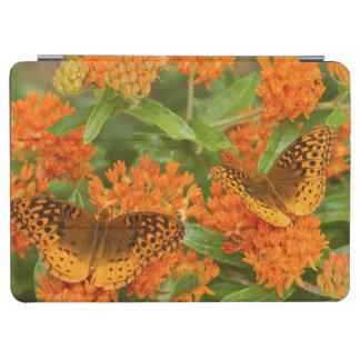 蝶Milkweedの素晴らしいちりばめられたFritillaries iPad Air カバー