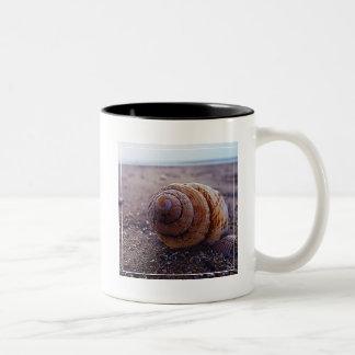 螺線形の貝のマクロ概観 ツートーンマグカップ