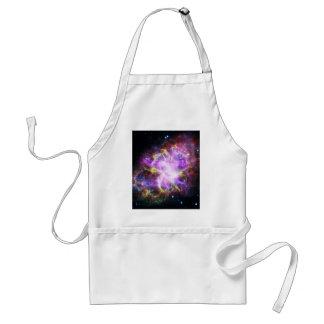 蟹星雲のChandraのX線 スタンダードエプロン