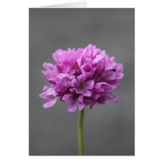 蟻が付いている紫色の花 カード