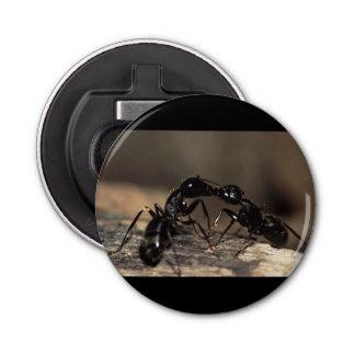 蟻の接吻 栓抜き