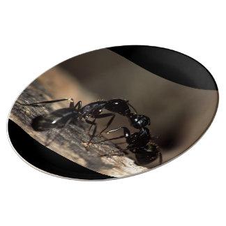 蟻の接吻 磁器プレート