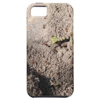 蟻は行進することを行きます iPhone SE/5/5s ケース