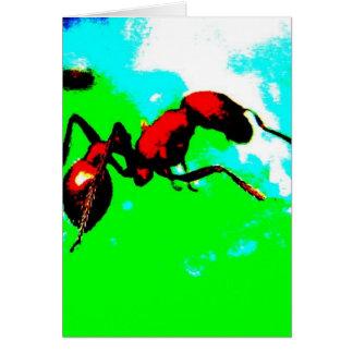 蟻 カード