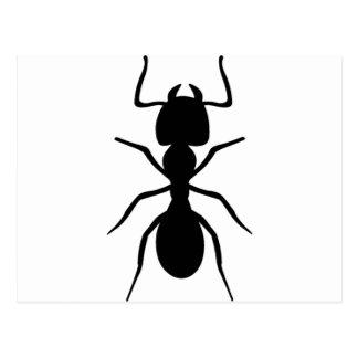 蟻 ポストカード