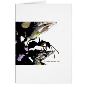 蟻   a カード