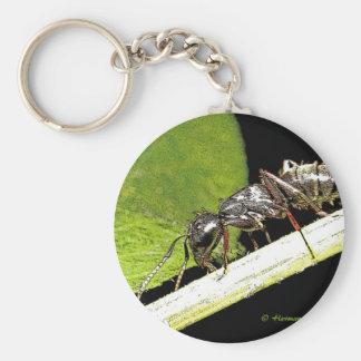 蟻b キーホルダー