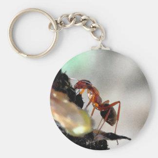 蟻g キーホルダー
