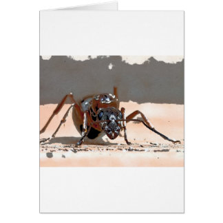 蟻I カード
