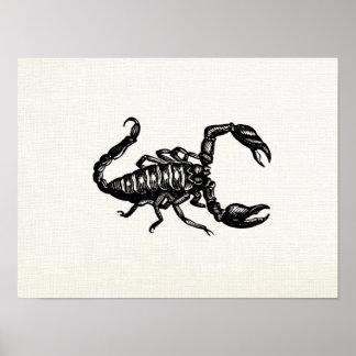 蠍の黒い略奪するクモ綱の刺し傷 ポスター
