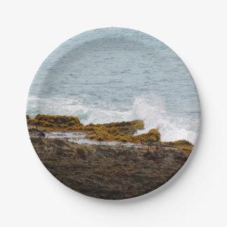 衝突の波: 岩が多い海岸 ペーパープレート