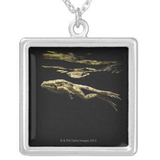表面の下の暗闇のカエルの水泳ちょうど シルバープレートネックレス