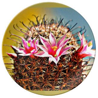 装飾的な磁器皿-サボテンの花 磁器プレート